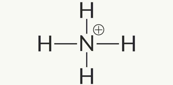 Polyatomic Ions Test Quiz!