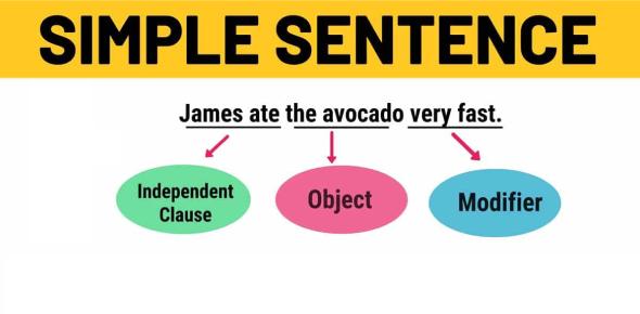 Simple Sentence Quiz: Test!