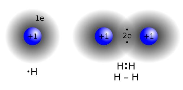 Covalent Bond Questions: Quiz!