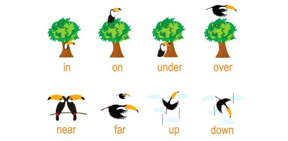 Prepositions: Grammar Exam Trivia Quiz!