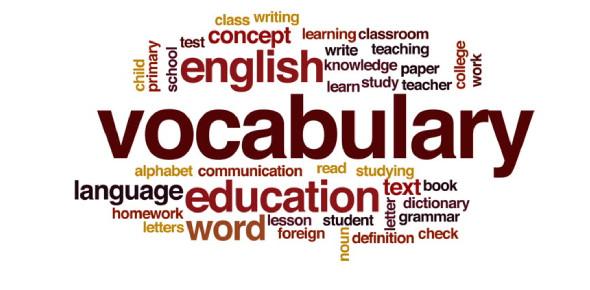 Vocabulary MCQ Exam: Quiz!