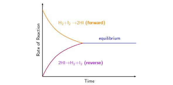 Chemical Equilibrium Exam Quiz!