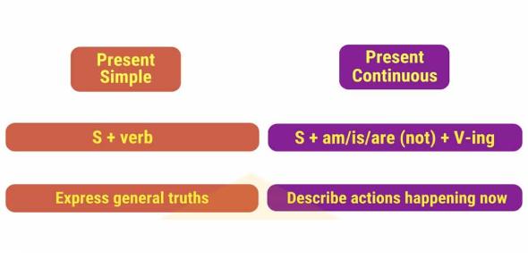 Simple And Present Continuous Tense Quiz!