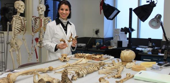 Skeletal Lab Practice Exam Quiz!