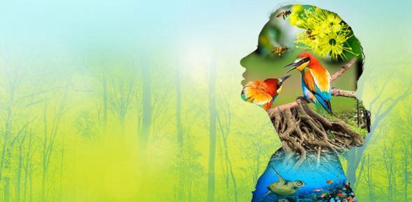 Biodiversity Quiz: Test Your GK!