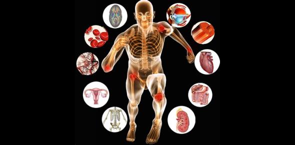 Anatomy And Physiology GK Quiz! Exam