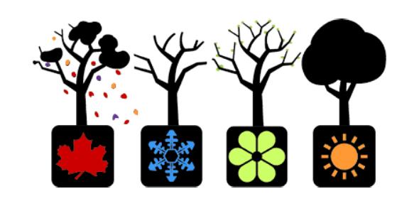 Weather And Season Quiz
