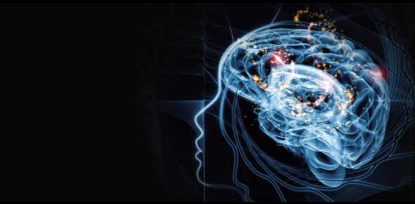 Quiz: Sensation And Perception In Psychology