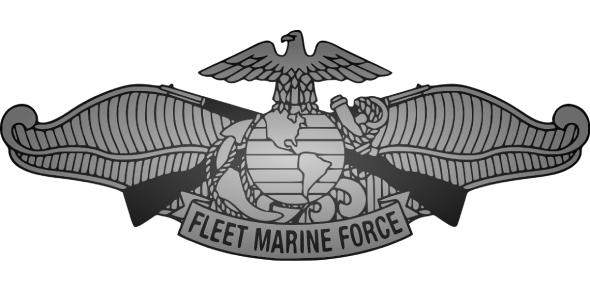 Fleet Marine Force FMF - Practice Test