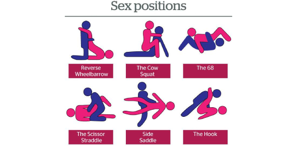 Guess The Sex Position Quiz!