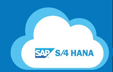 SAP S/4 Hana For Financial Accounting Associates