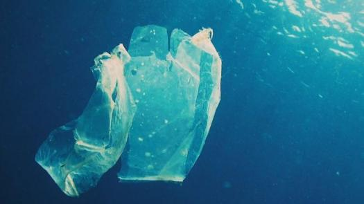 How Much Do You Know About Plastic And Its Effects On The Environment?