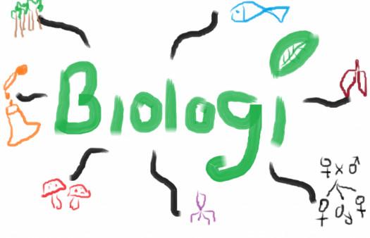Uh- Ruang Lingkup Biologi
