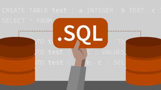 Database Management Using SQL