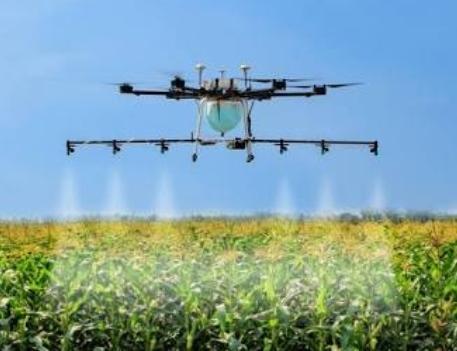 Quiz: Useful Agriculture Trivia Questios!