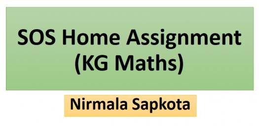 SOS Home Assignment (Kg Mathematics)