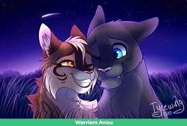 What Is Your Warrior Cats : Name , Rank , Personallity , Look And Mate ?