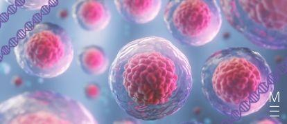 Cells As The Basis Of Life Quiz