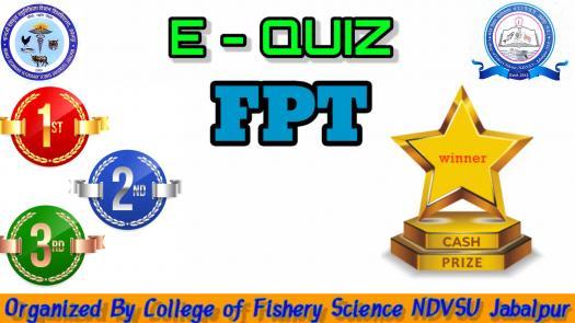 E - Quiz Fpt