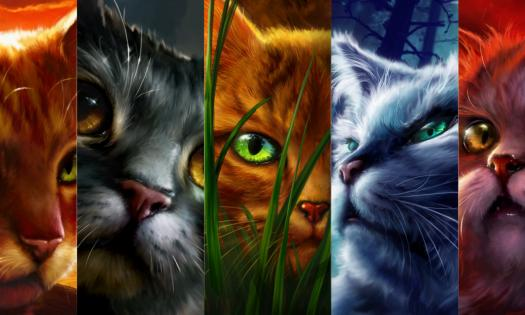 What Is Your Warrior Cat Description And Personality?