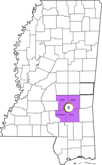Places In MS8: Covington, Jasper, Jones And Smith County, MS