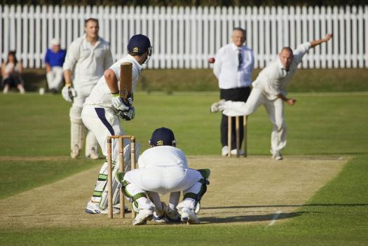 Image result for The sport of cricket
