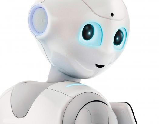 Robot Friends Challenge