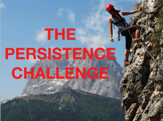 The Persistence Challenge