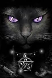 Warrior Cats Rock!! Do You?