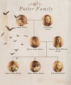 The ultimate harry potter family tree quiz proprofs quiz the ultimate harry potter family tree quiz thecheapjerseys Gallery