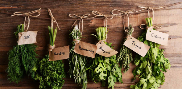 Is it possible grow herb gardens during the winter?