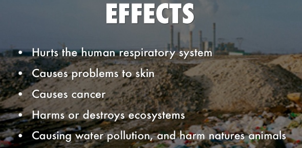 What are land pollution effects?