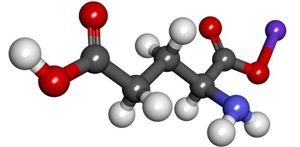 Where will energy be stored in the molecule (after protein consumption)?