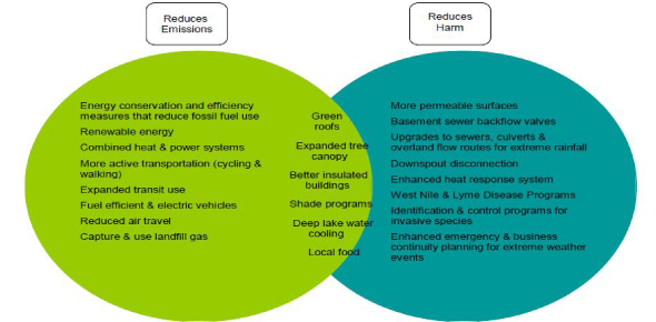 What is the difference between mitigation and adaptation?