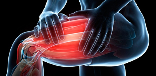 What directly contributes to the phenomenon of muscles remaining in a contracted state for a brief period of time?<br/>