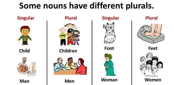 What is the difference between singular and plural nouns?