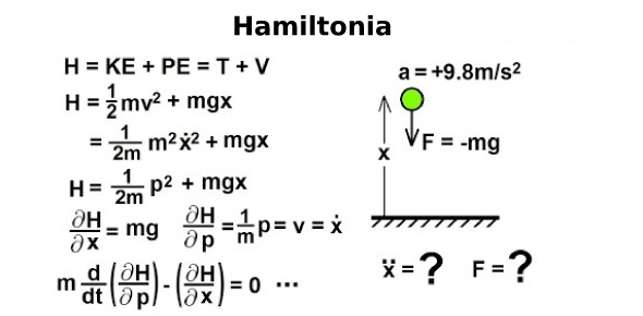 Which of the following was not a Hamiltonian idea?