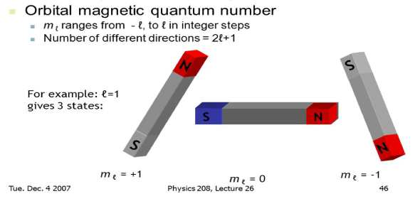 What would NS SN do if two magnets were in this order?
