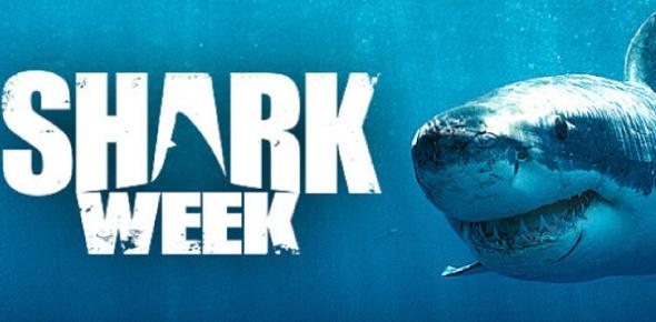 What year did Shark Week start?