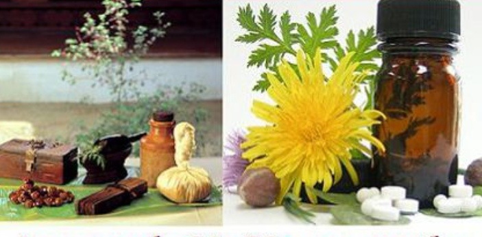 Ayurveda and Homeopathy are two forms of herbal medicine. Ayurveda medicines use vegetable drugs