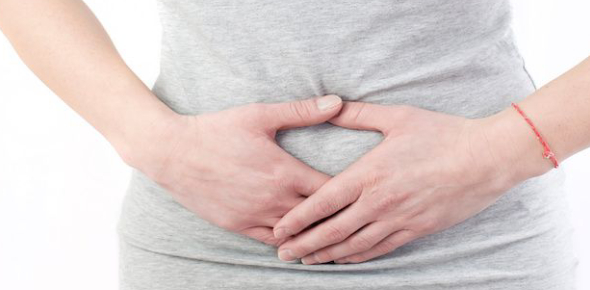 The stomach is the principal organ that breaks down food as it enters the digestive system.