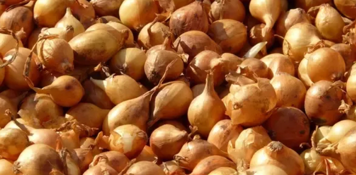 Shallots and leeks are both parts of the onion family. Shallots are bulbs and have a firm texture;