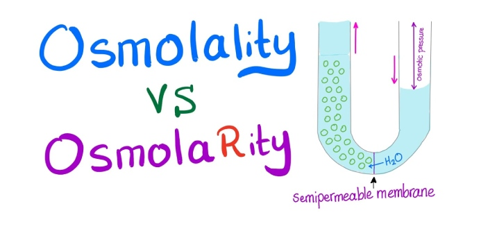 Osmolality and osmolarity are two terms that are used to measure the amount of osmoles of solute