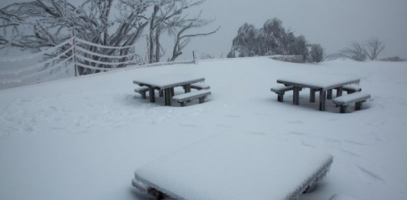 In some places in Australia, snow does fall during the winter months. But this is not so in the