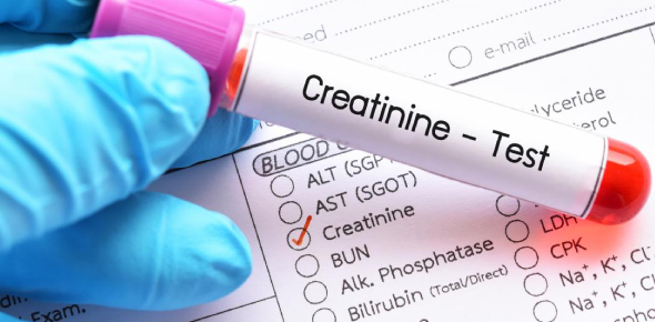 Creatine and creatinine are two protein-derived compounds found in the body. Creatine is