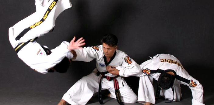 Aikido and Hapkido are two types of fighting styles. Although both aikido and Hapkido are related