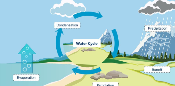 The role of evaporation and condensation in the water cycle is They recycle and redistribute the