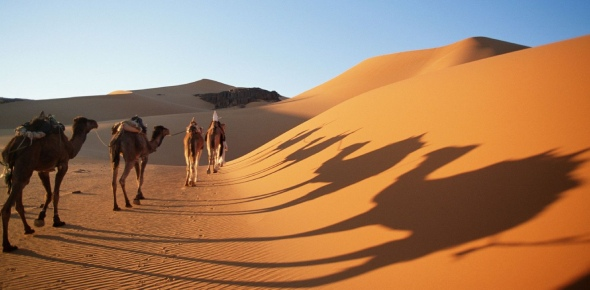 The hottest desert in the world is the Sahara Desert. The highest temperature recorded on the land