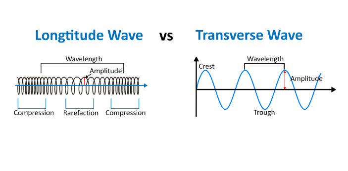 Energy is transferred when a wave takes place. There are two main types of waves. There are the