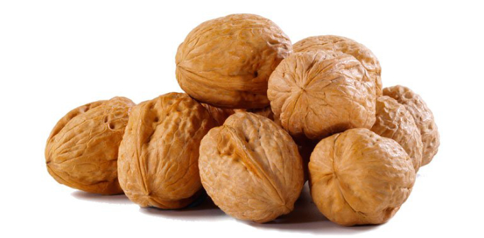 The English walnuts and black walnuts are both belonging to the genus juglans. The English walnuts